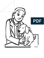 veterinario 2