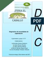 11resumen DNC.docx