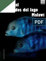 Revista Acuariofilia Total Edición 12