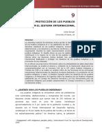 LA Proteccion de Los Pueblos Indigenas en El Sistema Internacional