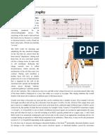 electrocardiography.pdf