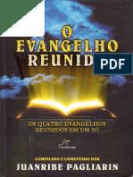 204571656-O-Evangelho-Reunido-Juanribe-Pagliarin.pdf