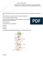 TALLER DE CIENCIAS GRADO 5.doc