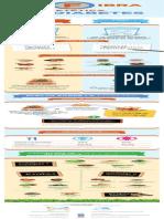 Infografia_fibradietetica