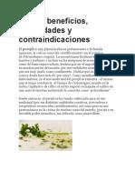 Beneficios Del Perejil