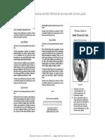 Novena Sta Teresa Triptico.pdf