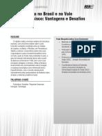 A Fruticultura No Brasil e No Vale Do São Francisco Vantagens e Desafios