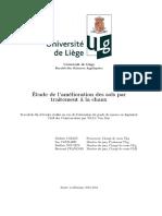 2012_2013_TRAN-Van_Duy.pdf