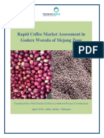 Coffee Assessment Report__Fufa 2016.pdf