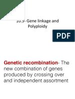 10-3 gene linkage   polyploidy