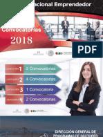Convocatorias INADEM 2018.pdf