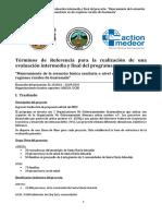 TDR Evaluación Final e Intermedia Medeor
