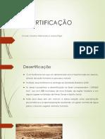 DESERTIIFICAÇÃO.pptx