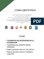 Anatomia Obstetrica 2018