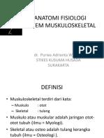 ANATOMI FISIOLOGI   muculoskeletal