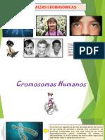 02 Anomalías Cromosómicas , Grupo IV