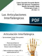 Las Articulaciones Interfalángicas