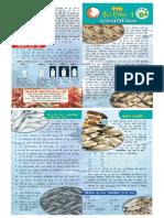 Aquamagic Termin & Agricalture Bokashi