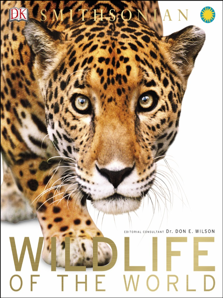 Wildlife of the World (2015) | Grassland | Forests