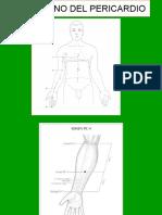 Punti_Agopuntura_Seconda_Parte.pdf
