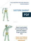 sistem-saraf.pdf