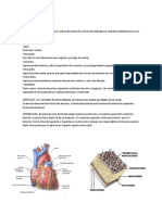 Semiología del Corazón