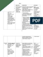 plan ingrijiri in cardiomiopatia ischemica