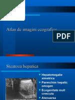 Atlas de Imagini Eco Grafice