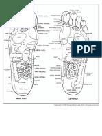 Foot Reflexoogy Chart