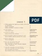 Chaves Analíticas (Agarez Et Al, 1994, p. 99-186)