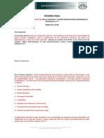 Informe Diplomado redes sanitarias