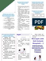 Dokumen.tips Leaflet Kehamilan Dengan Risiko Tinggi
