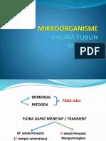 mikroorganisme manusia