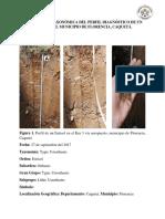 Descripción Taxonómica Del Perfil Diagnóstico de Un Entisol