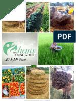 Arabic Web