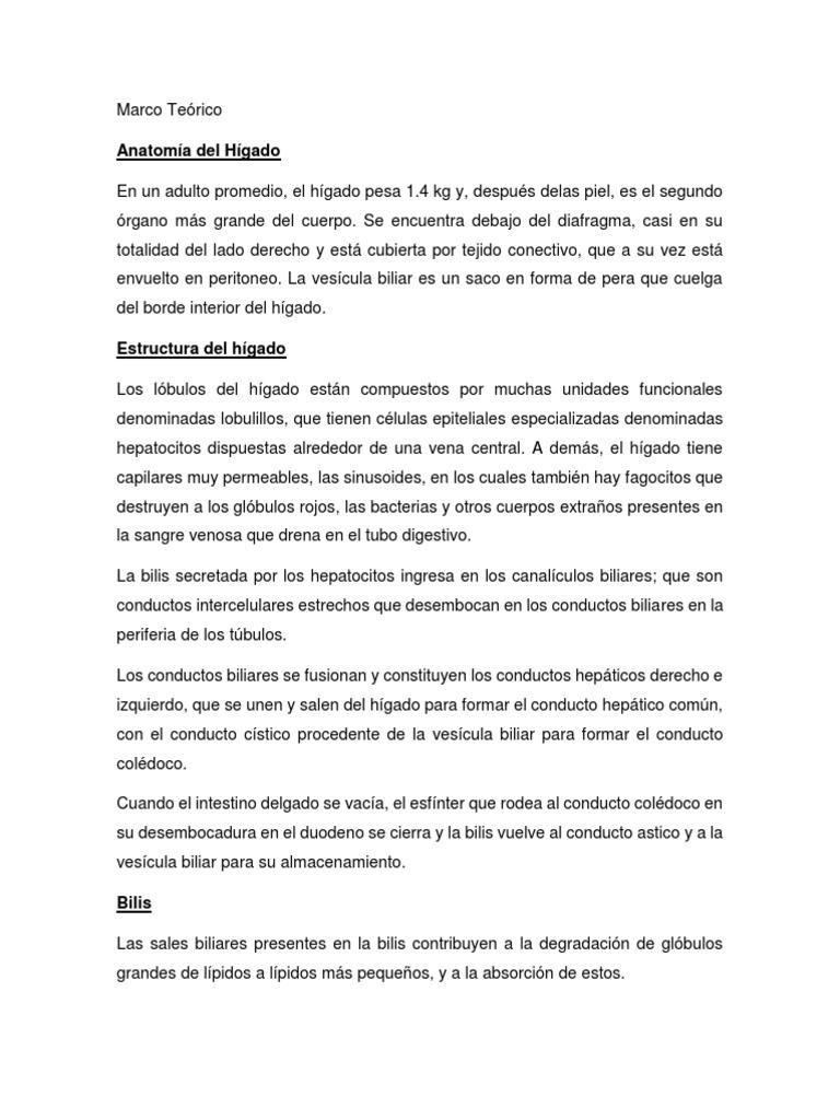 Lujo La Forma De Marco Alrededor De Los Conductos En Un Sótano Foto ...