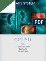 kelompok 11 Urinary System.pptx