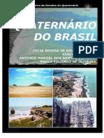 Capitulo8 LivroABEQUA-Quaternario Do Brasil2005