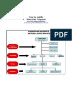 GUIA DE BOLSILLO MATERIALES PELIGROSOS.pdf