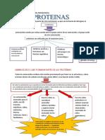 Bromatología - Proteinas (Esquemas)