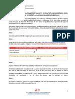 Guia Carga Matricula Academica AD15