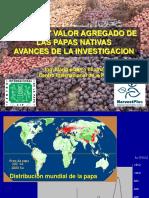 Andahuaylas-presentacion Dia Papa May2007(1).ppt