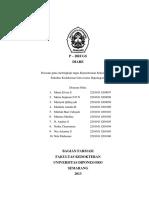 160867291-p-Drug-Diare.docx