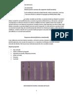 Coroana metalica turnata.pdf