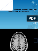 Imagistica - Sectiuni Cap-gat