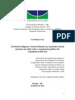 CRUZ, Lia Mendes. Territórios Indígenas e Desenvolvimento Na Amazônia Central Peruana Um Olhar Sobre a Rganização Política Dos Ashaninka Do Rio Ene