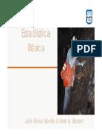 Estadistica Basica UNSL 09