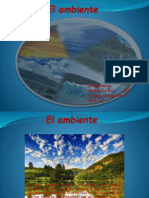 EL AMBIENTE Dispositivas