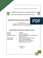 Shana Tesis Titulo 2014 Exp. Constitucional