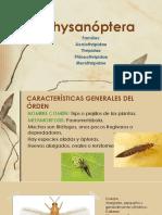 Thysanóptera